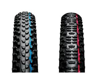 Schwalbe Racing Ralph + Racing Ray TLE Tyre