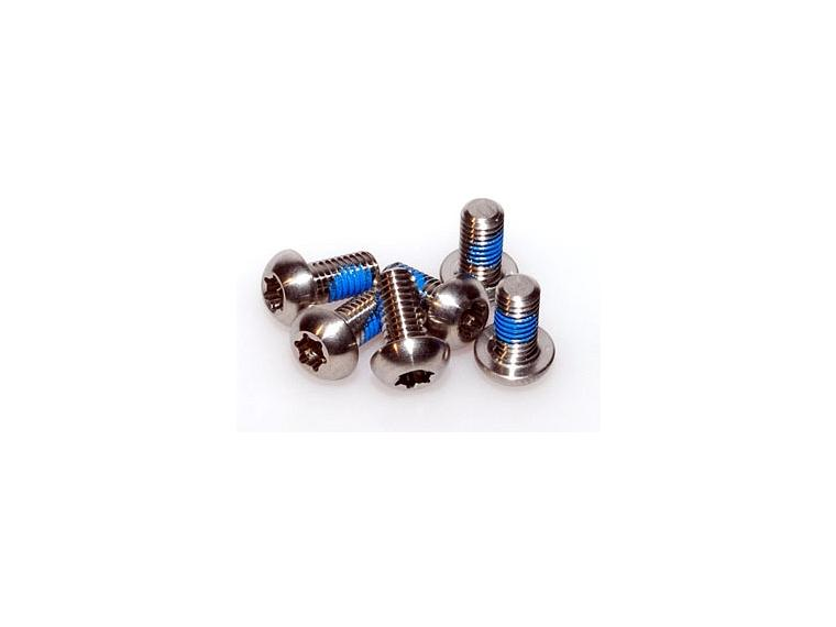 Hope Titanium disc bolts
