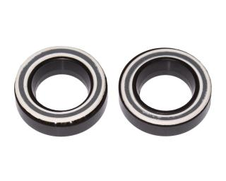 Fulcrum Bearing set RS-100 Bearing