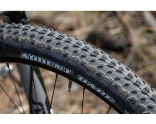 Maxxis Ardent Race EXO 3C MaxxSpeed Tubeless Ready