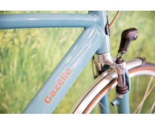 Gazelle Orange C7 Plus Citybike